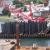 Replacement of Sakonnet River Bridge Image #5
